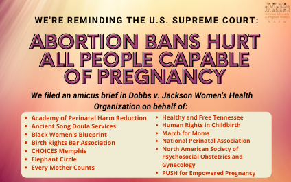 National Advocates for Pregnant Women Files Brief with U.S. Supreme Court Focusing on the Impact of Mississippi's Abortion Ban on All Pregnant People, Not Only Those Seeking to End a Pregnancy